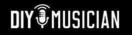 DIY Musician CROWDSTART Ariel Hyatt