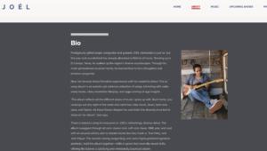 Musician's Website - artist bio example
